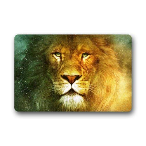 ferfgrg Cool Lion Face The King of Animal Doormats Floor Mat Door Mat Rug Indoor/Outdoor Mats Welcome Doormat 23.6x15.7 ()