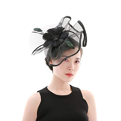 DRESHOW Fascinators Mesh Net Federn Schleier Party Stirnband Blume Derby Hut und ein Clip Tea Partei Headwear für Mädchen und Damen