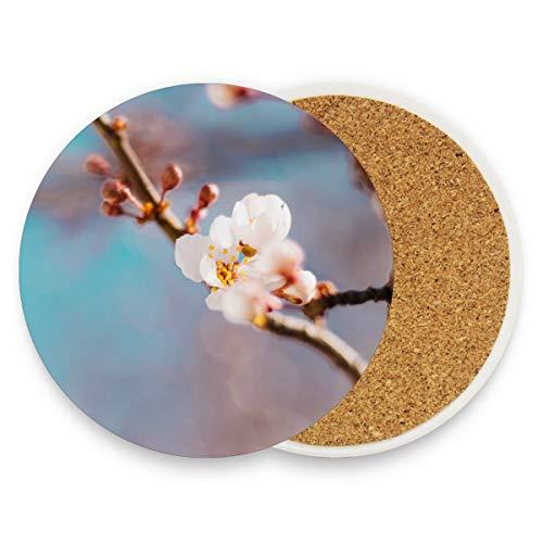 Kirsch-marmor (Malpela Orientalische Kirsch-Untersetzer für Getränke, groß, 9,9 cm Größe, passend für alle Tassen zu Hause, Küche, Dekoration, Geschenkidee, Holz, 1, 1 piece set)