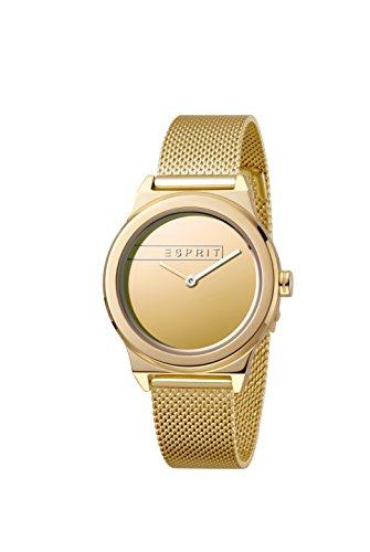 Esprit Femmes Analogique Quartz Montre avec Bracelet en Acier Inoxydable ES1L019M0085