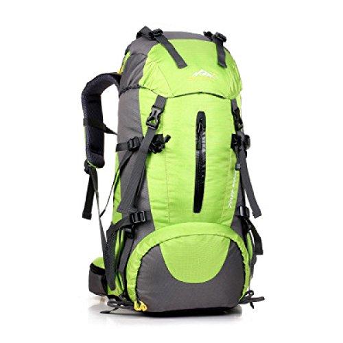 Profi Outdoor Sport Rucksack Bergsteigen Tasche 50L Mit Regen Abdeckung Green
