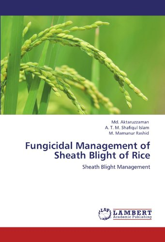 fungicidal-management-of-sheath-blight-of-rice-sheath-blight-management