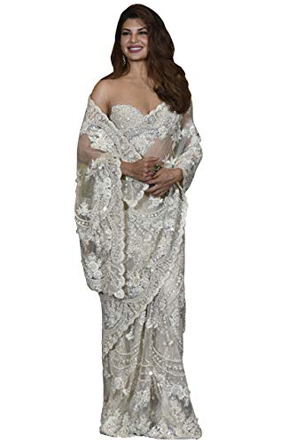 Swara Fashion Women\'s Nylon Net Multi Work Saree(SFPBT-192_White)