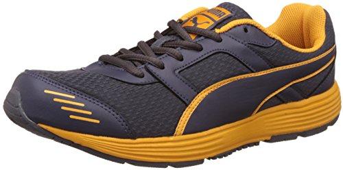 Puma Men's Harbour Fashion Periscope and Zinnia Running Shoes - 10 UK/India (44.5 EU)