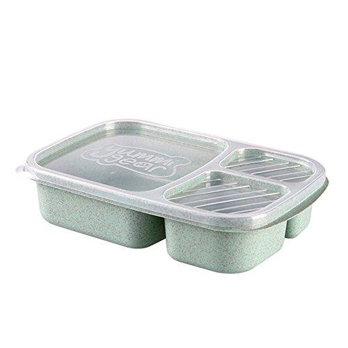 TLfyajJ 3 Fächer PP, plastikfrei, BPA frei, auslaufsicher   Geeignet für Mikrowelle, Gefrierschrank und Spülmaschine  Lunchbox Vorratsbehälter für Kinder Erwachsene Picknick Grün (Planetbox-lunch-box)