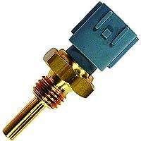 FAE 33460 Inyección de Combustible