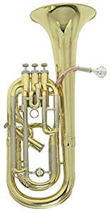 Roy Benson MOD.BH-302BB 3 Plus 1 Ventile Lacquered Finish Baritone with Light Weight Form Shaped Case