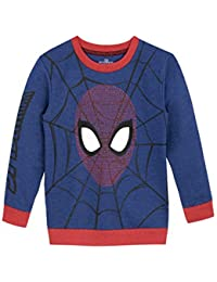 Spiderman Boys Spider-Man Sweatshirt Ages 2 To 12 Years