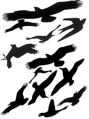 Muttify Antipájaros Colisión Ventana Alerta Pájaros