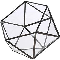MagiDeal Klare Glas geometrische Terrarium Box Sukkulent Pflanze Pflanzer - 12 x 12 x 12cm schwarz