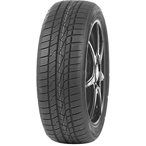 Gomme Roadhog Rg as 01 165 65 R14 79T TL 4 stagioni per Auto