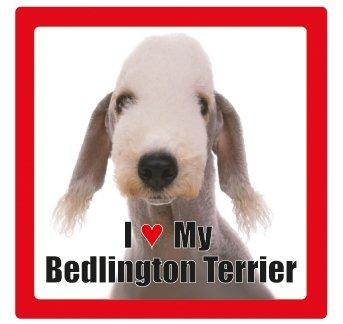 Bedlington Terrier benannt Hund/Haustier Untersetzer von Sterling effectz -