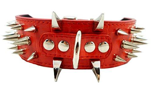 Dogs Kingdom Faux Croc Leder Spikes HALSBAND 5,1cm breit, 40Große Spikes Gold (Faux Croc Rot)