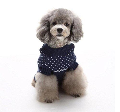 manteau pour chien tricot