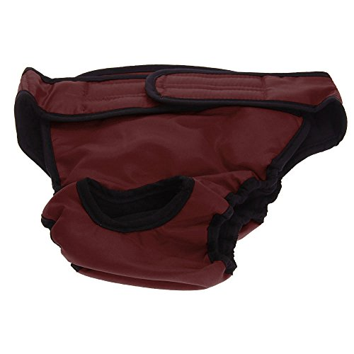 Hunde Hündinnen Schutzhose Läufigkeit Unterhose Unterwäsche Läufig Pant L Rot