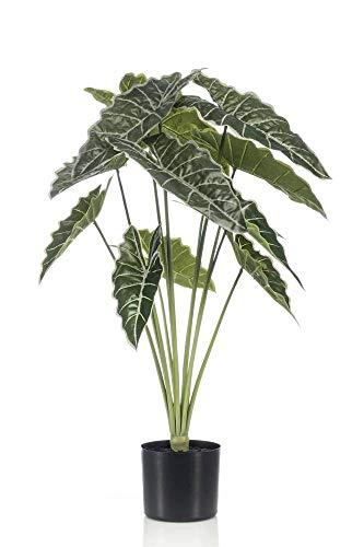 artplants Set 4 x Künstliche Alocasia Sanderiana Fiorella, grün, 80cm - Alocasia Kunstpflanze/Elefantenohr Künstlich