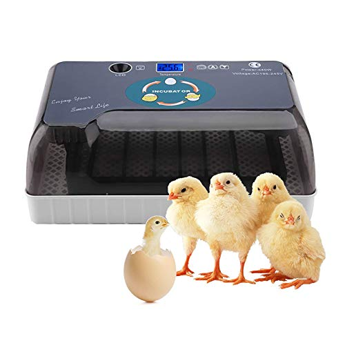 Chidi Toy ncubadora de Huevos, incubadora para Huevos automática, Iluminación de Alta eficiencia y función de Giro automático de Huevos, para Huevos, Huevos de Pato, Huevos de Fuego, etc. (35) (35)