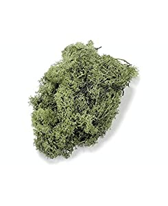 Gütermann / KnorrPrandell 6694446 - Islandia Musgo Verde 50g Importado de Alemania