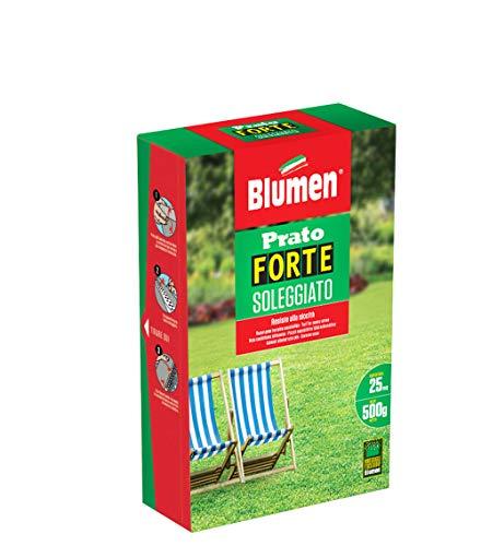 Blumen Prato Forte Soleggiato 500 gr Verde