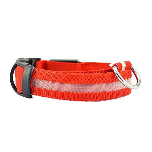 es Halsbänder, Sicherheit Haustier Kragen für Beleuchtete Nylon LED Hundehalsband Glühen Halskette Blinkender Hunde Halsband Nylon Leuchtender Nacht Hundeband (S, Rot) ()