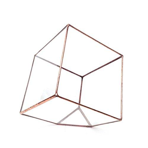 cube-large-geometric-glass-terrarium-modern-planter-indoor-gardening-handmade-bronze