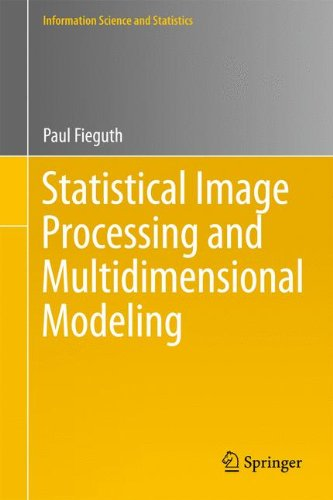 Preisvergleich Produktbild Statistical Image Processing and Multidimensional Modeling (Information Science and Statistics)