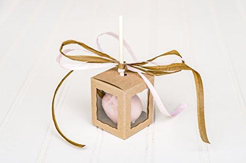 12Kraft braun Cake Pop Box mit Fenster und 12Cake Pop Sticks-4,4x 4,4x 5,1cm Boxen-15,2cm Sticks