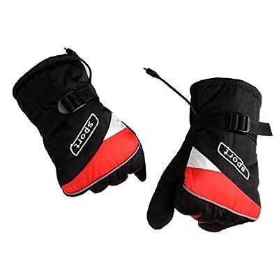 Malloom® 12V Guantes de carga Grips Coche eléctrico Calefacción Eléctrica Guante Aislamiento Térmico Guantes (rojo)