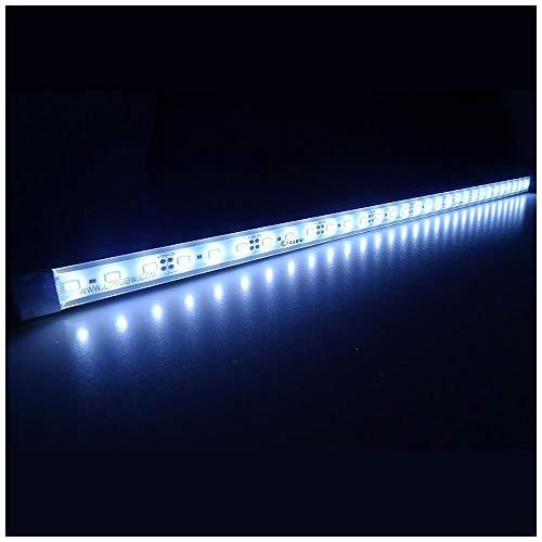 LTRGBW SMD 5730 5800K-6200K 12V DC 12W LED blanco