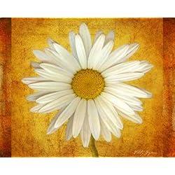 Feeling at Home, impresión artística X Marco–Marco (Fine Art Print, Daisy de oro cm 81x 102