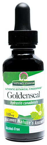 natures-answer-goldenseal-root-alcohol-free-1-fl-oz