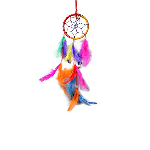 AsianHobbyCrafts Dream Catcher Wall Hanging : Size (LxB) 28x8 cm : 'Macaw'  available at amazon for Rs.125
