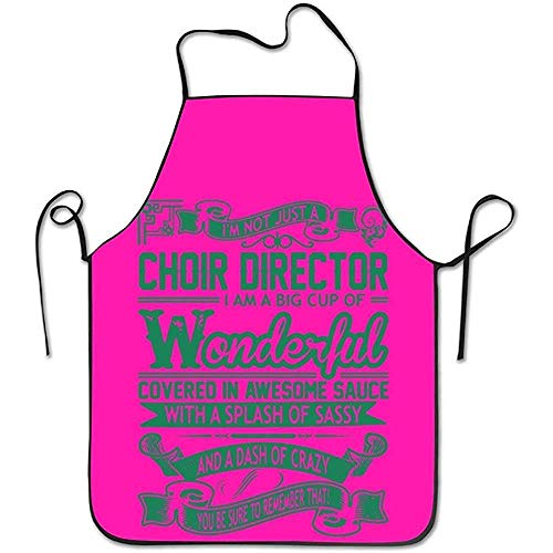 Aprons Choir Director Big Cup Wonderful Sauce Sassy Crazy Kitchen Apron Chef Sauce Server