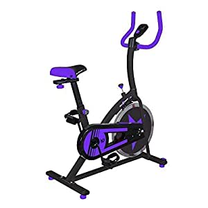 We R Sports C100 Exercise Bike/Indoor Cycle - Purple