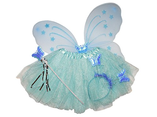 Snow Princess Fairy Tutu and Wings and Headband with Sparkle