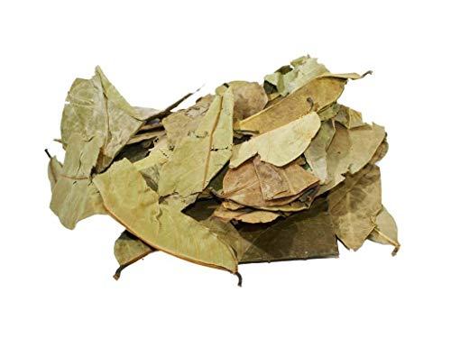 Tè de Graviola Annona Muricata hojas (Guanábana, Guyabano, Corossol, Soursop) - 100g