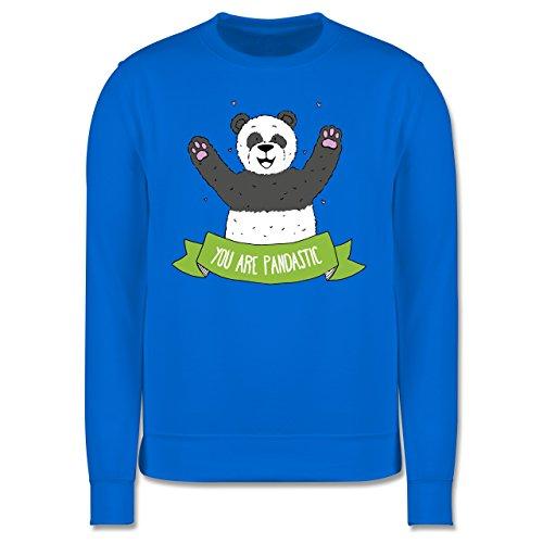 Statement Shirts - Panda You are pandastic - Herren Premium Pullover Himmelblau