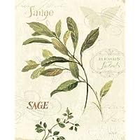 Aromantique IV disponibile di controllo, Lisa–Stampa artistica su tela e carta, Tela, SMALL (8 x 10 Inches )