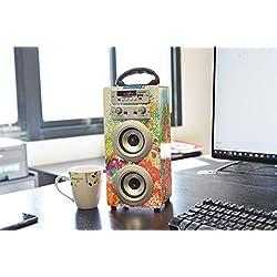 DYNASONIC Enceinte Karaoké Bluetooth Portable série 025 Radio FM, Microphone et Lecteur SD USB (Modele 1)