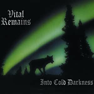 Into Cold Darkness (Limited Edition) [Vinyl LP]