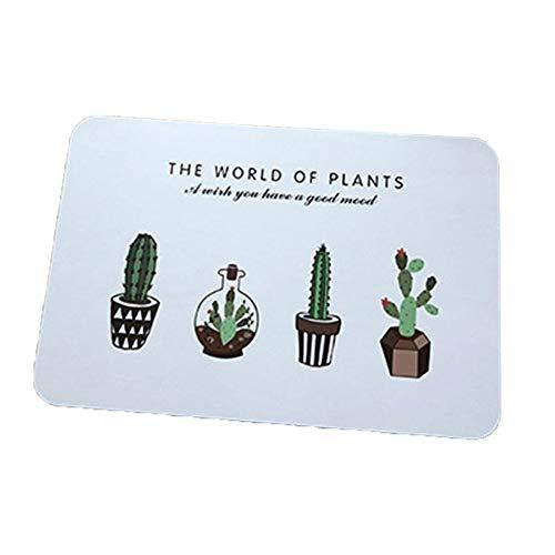 Hacoly Alfombrilla PVC Placemat Salvamanteles Individuales