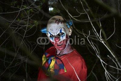 otiv: scary evil clown in the woods #123908367 - Bild auf Alu-Dibond - 3:2-60 x 40 cm/40 x 60 cm (Scary Clown Bild)