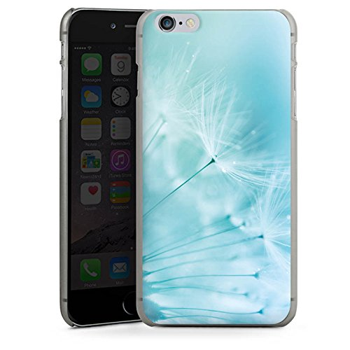 Apple iPhone 6 Tasche Hülle Flip Case Pusteblume Blau Blume Hard Case anthrazit-klar