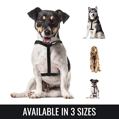 BELISY Hundegeschirr reflektierend aus Nylon – Geschirr… | 04260481691043