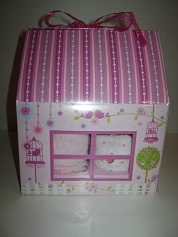 Set of 4 Baby Girl Cupcakes (mit Bodys) in Fairy Cottage Box