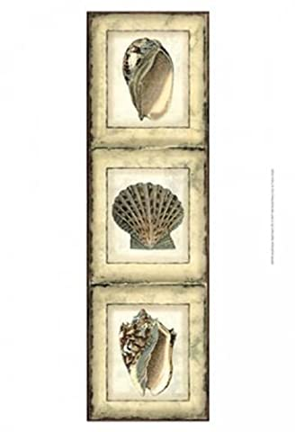 Vision studio – Small Rustic Shell Panel I Fine Art Print (24.13 x 33.02 cm)