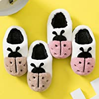 Nikai slippers men novelty,Winter children
