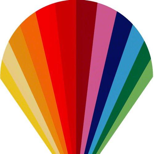 Walimex Pro Farbfilterset (30 x 30 cm, 12-teilig)