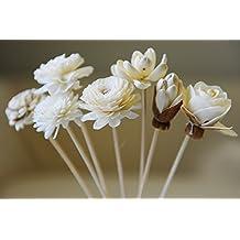 Proudnature Exotic Set di 7fiori assortiti in legno sola, bastoncini per diffusore profumato