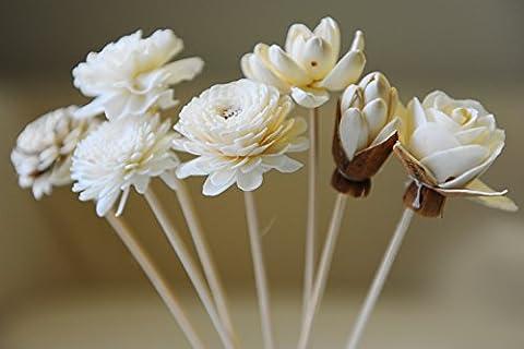 Proudnature Scent Lot de 7diffuseurs de parfum d'ambiance Tiges de roseau surmontées de fleurs en bois